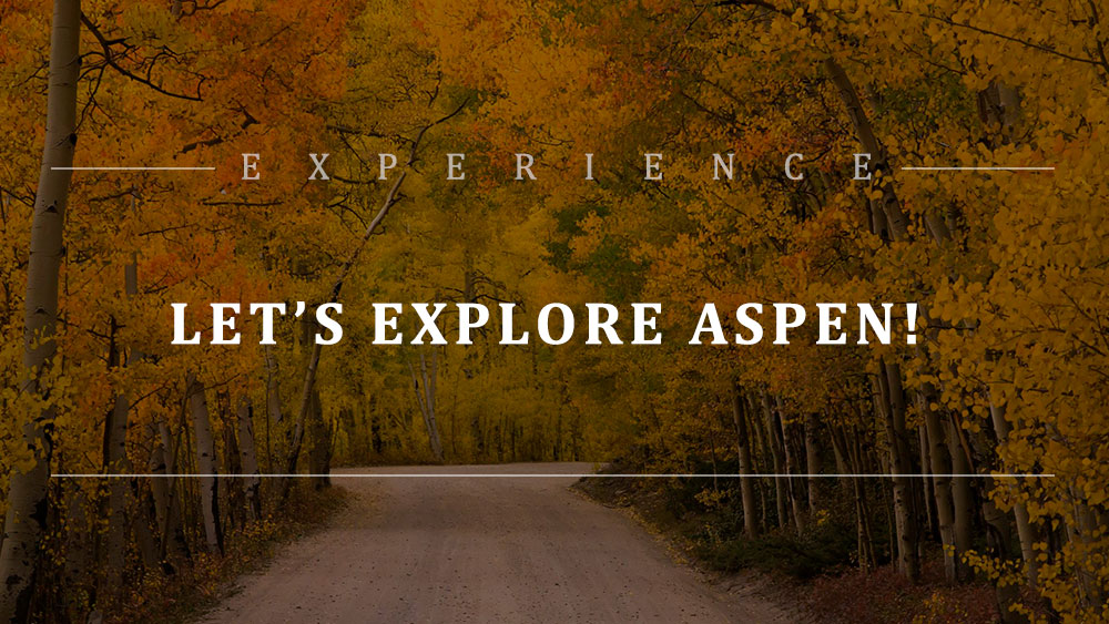 Experience: Aspen